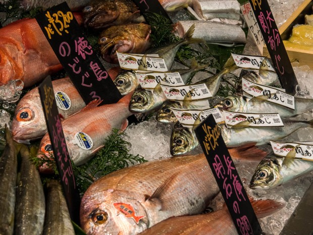 Around the world in 12 days tokyo impressions streets for Wholesale fish market near me