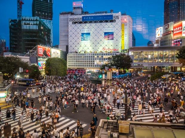 Shibuya Crossing Tokyo at Night
