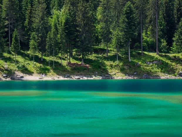 Alpine Caribbean |Switzerland |2018