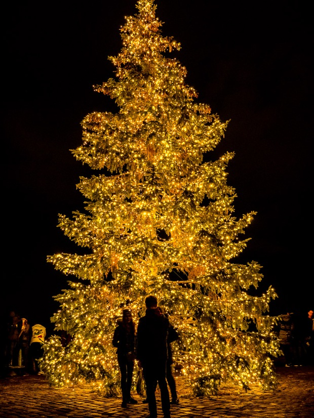 Imperial Christmas Tree | Nuremberg | 2018